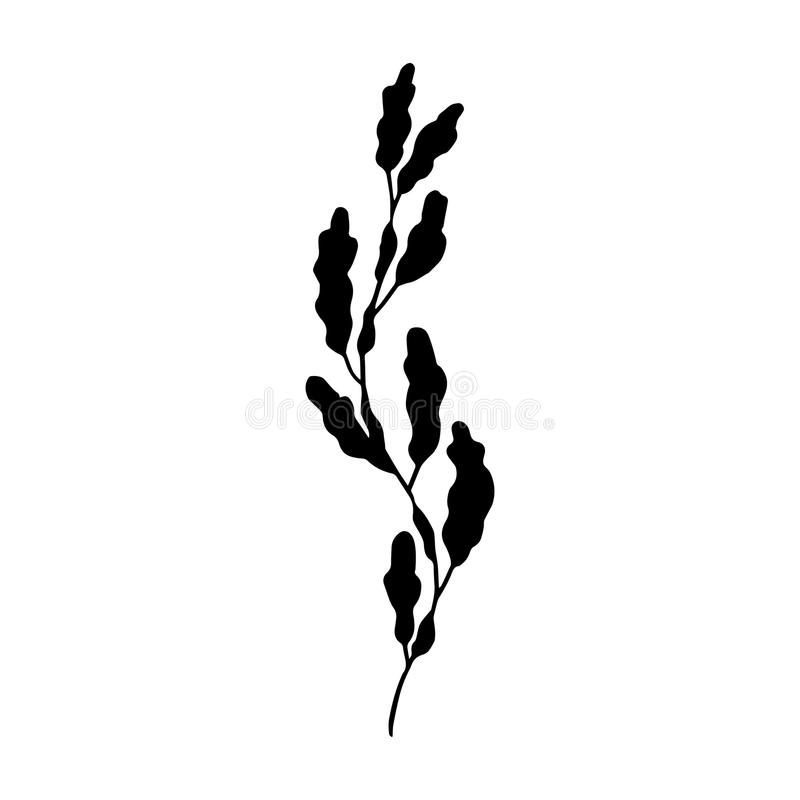 Seaweed vector. Isolated black silhouette royalty free illustration