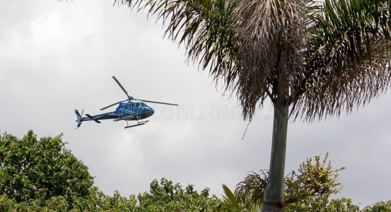 Seaworld Chopper Crop stock foto's