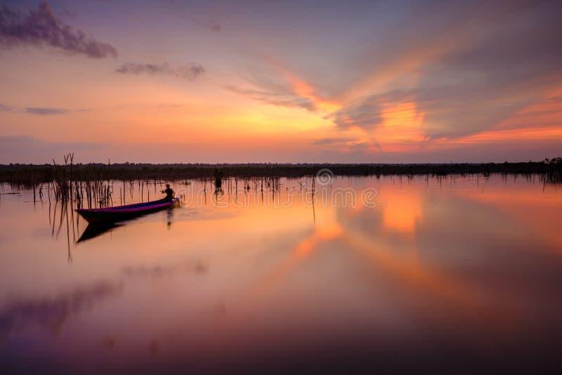 Sebangau rzeka przy Środkowym Kalimantan Indonezja fotografia stock