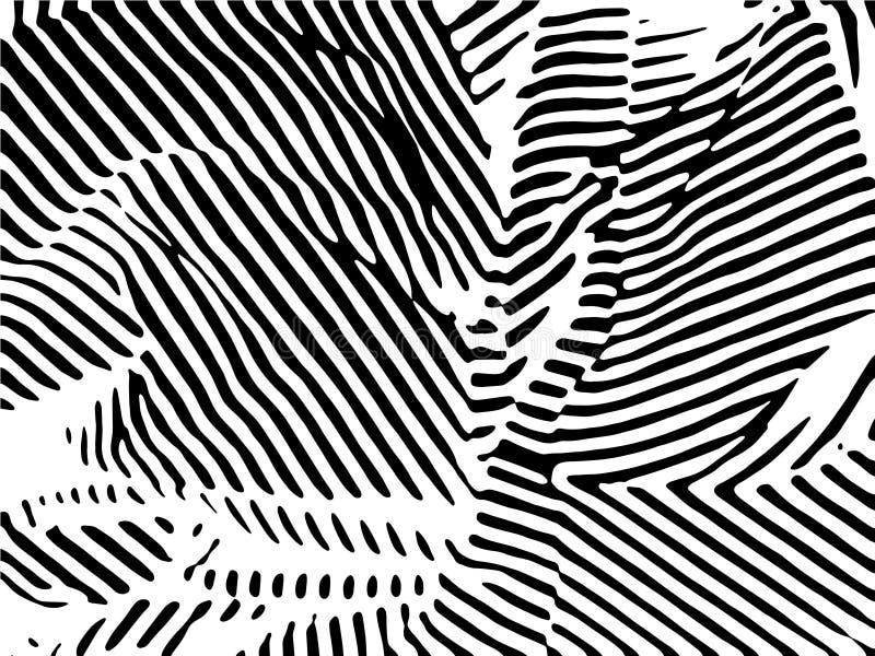 Sebrabandmodell Sebratryck, djur hud, tigerband, abstrakt modell, linje bakgrund, tyg vektor illustrationer
