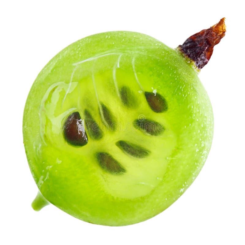Secção transversal da fruta verde do gooseberry, macro imagem de stock royalty free