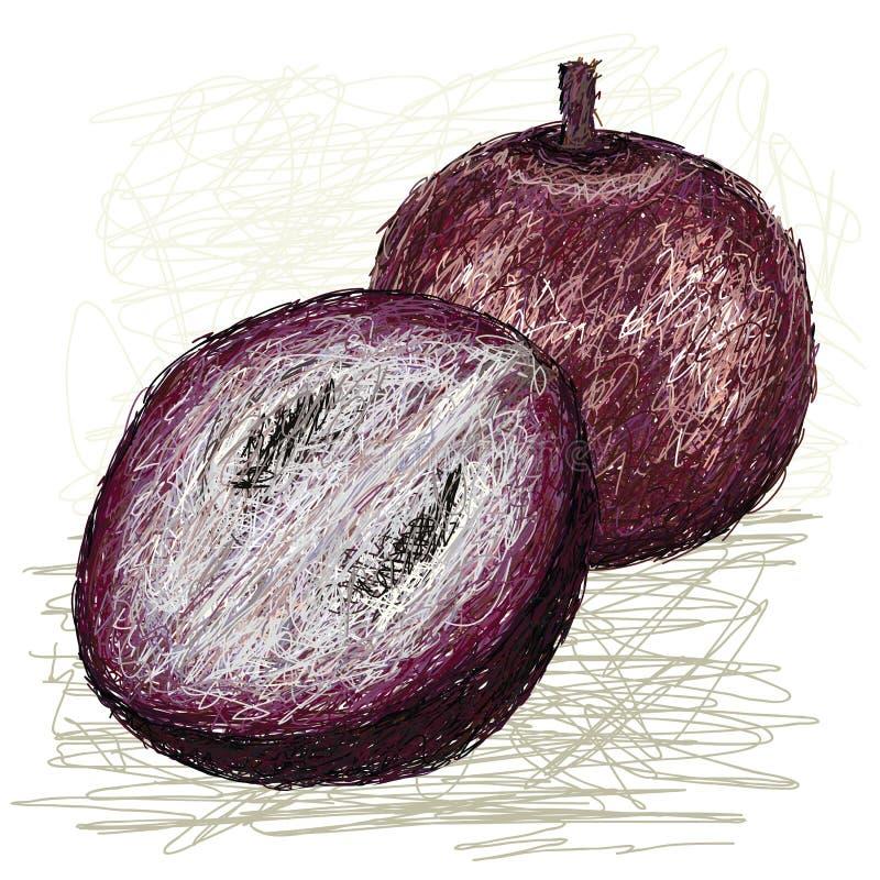 Secção transversal da maçã de estrela ilustração royalty free