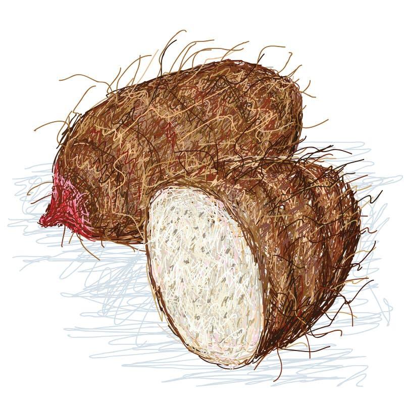 Secção transversal do xanthosoma do Taro ilustração royalty free