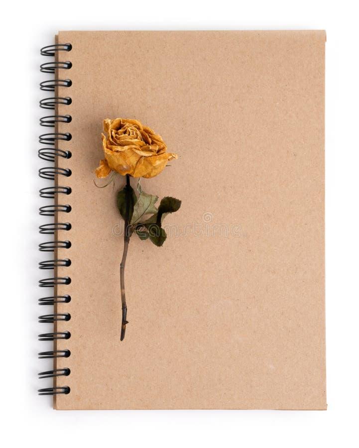 Secado aumentou a flor com o lápis no caderno fotos de stock