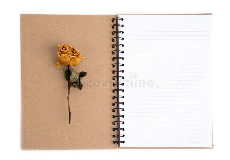 Secado aumentou a flor com o lápis no caderno imagem de stock royalty free