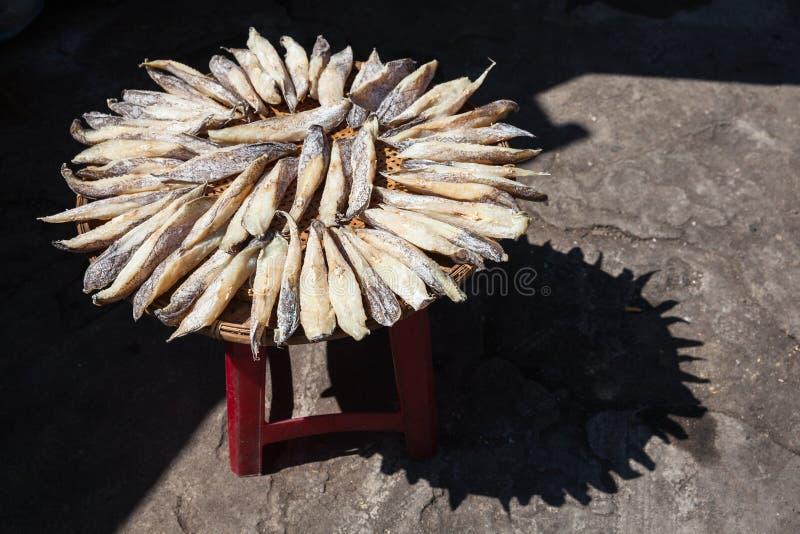 Secado de pescados salados foto de archivo libre de regalías