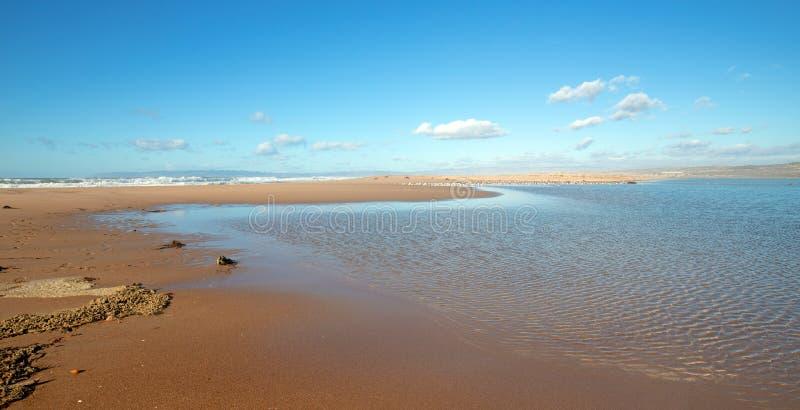 Secado del quelpo y de la hierba del mar en el estuario del río de Santa Maria en Rancho Guadalupe Sand Dunes en California centr imagenes de archivo