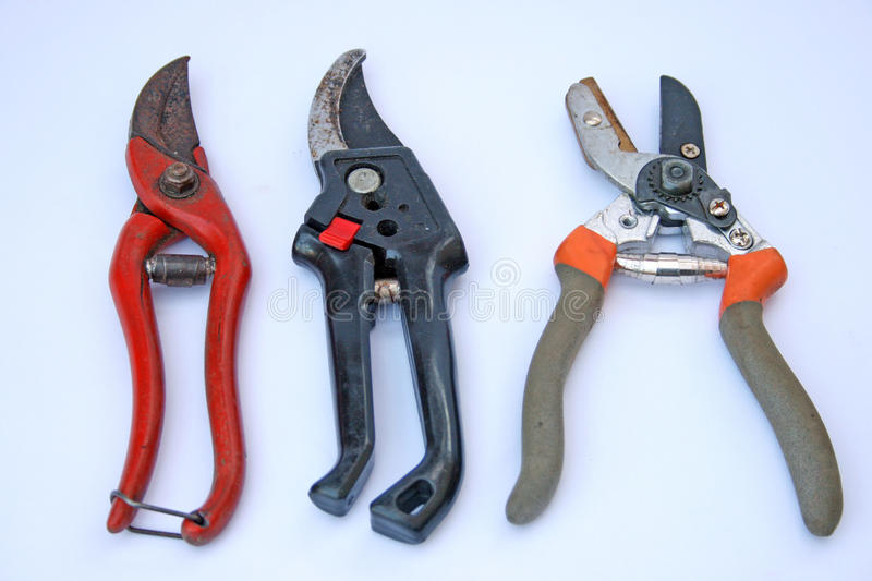 Secateurs. Three pairs of used garden secateurs of different styles on a plain background stock image