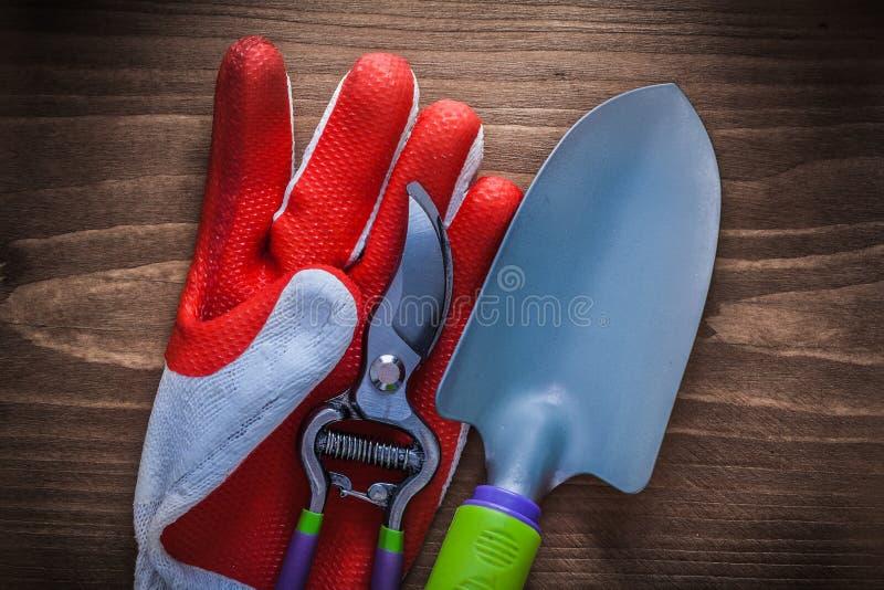 Secateurs do aço da luva protetora e agricultur de jardinagem da pá de pedreiro foto de stock royalty free