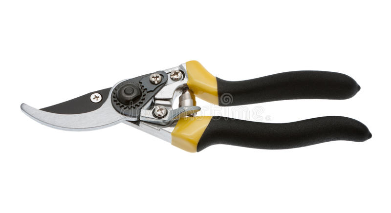 Secateurs isolated stock photos