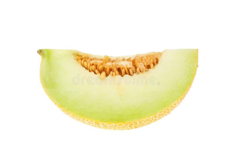 Sección del melón de Galia imágenes de archivo libres de regalías