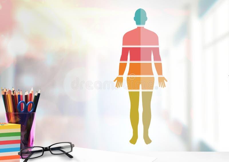 Secciones coloridas del cuerpo humano y objetos educativos ilustración del vector
