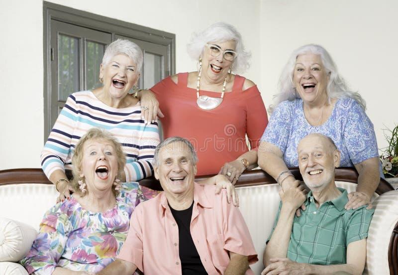 Sechs ältere Freunde, die stark lachen stockfotografie