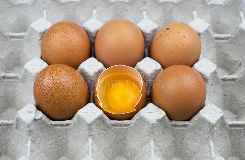 Sechs Eier im Papierbehälter stockfotos