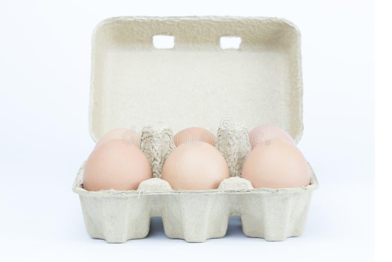 Sechs Eier im Papierbehälter kartonieren brauner Kasten lokalisiertes weißes backgroun stockfotografie