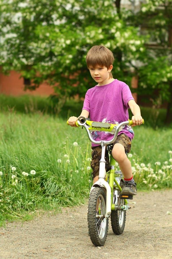 Sechs jähriger Junge, der Fahrrad auf dem Löwenzahngebiet fährt lizenzfreie stockbilder