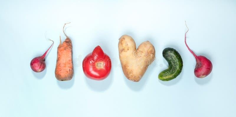 Sechs reifes hässliches Gemüse: Kartoffel, Tomate, Gurke und Rettich breiteten in der Reihe auf hellblauem Hintergrund aus stockbild