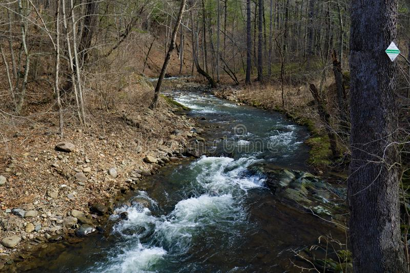 A Secluded Mountain Trout Stream in the Blue Ridge Mountains. A secluded mountain trout stream located in the Blue Ridge Mountains of Botetourt County, Virginia stock image