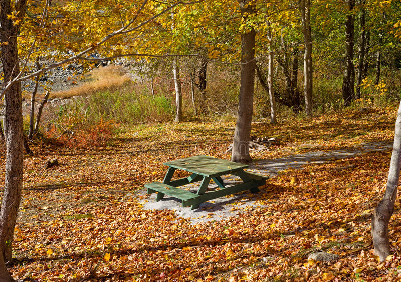 Secluded picnic table amongst fall leaves and forest stock photo