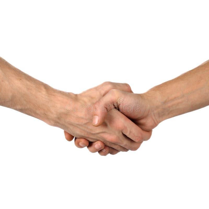Secousse de main sur le blanc photos stock