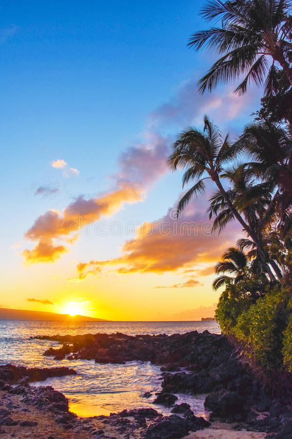 Secret Beach Sunset with Palms in Maui Hawaii royalty free stock photos