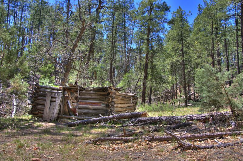 Secret Cabin stock photography