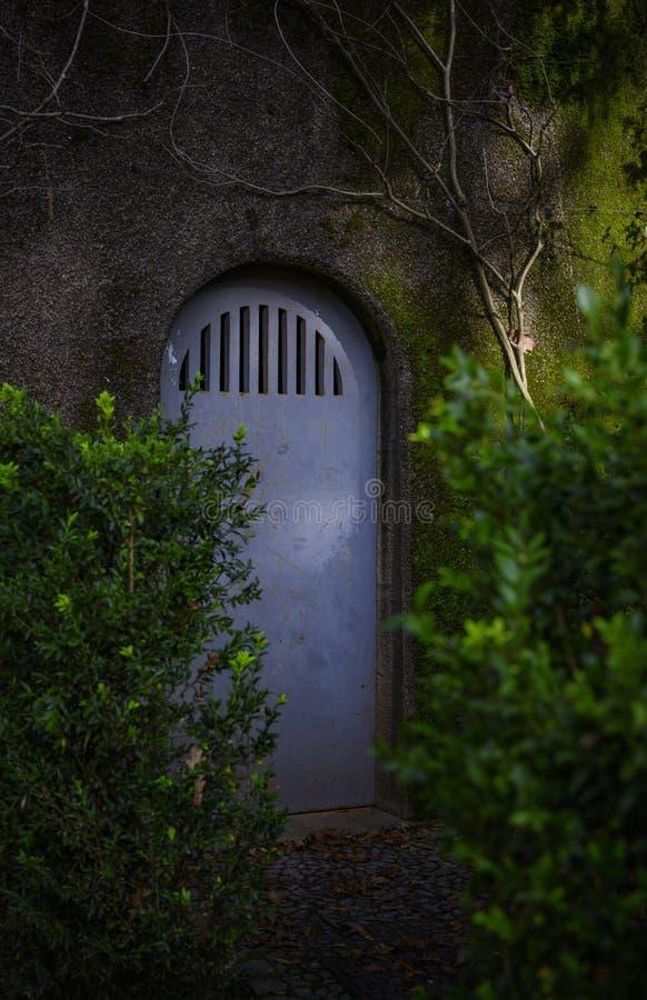 Secret door in the woods royalty free stock photography
