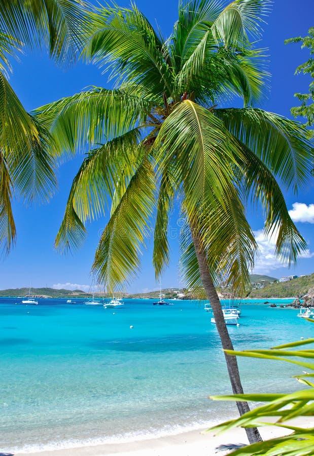 Secret Harbor, Virgin Islands stock photo