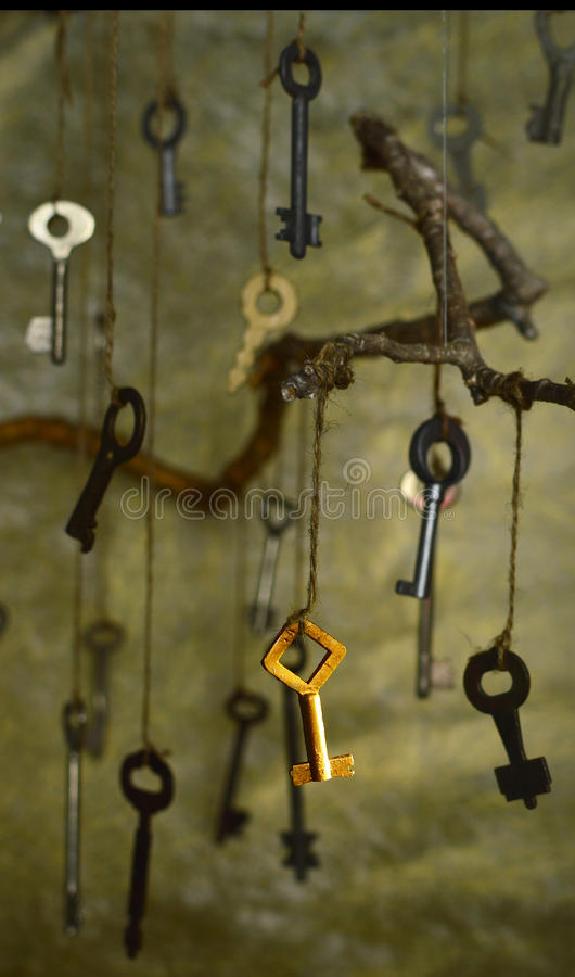 The secret key 2. Collection of keys defocused with the chosen focused key in front stock image