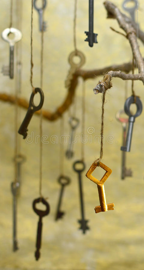 The secret key stock photos