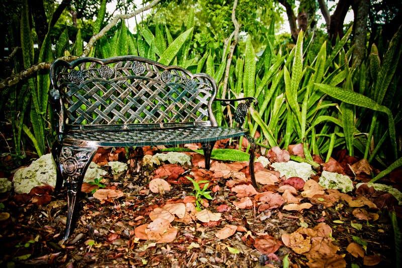 Swell Romantic Garden Bench Swing Stock Image Image Of Botanical Evergreenethics Interior Chair Design Evergreenethicsorg