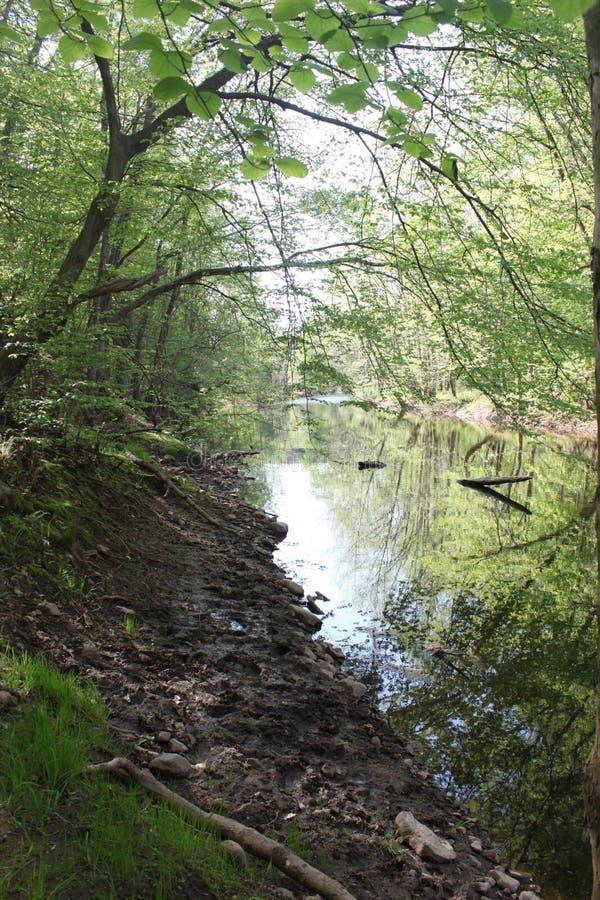 Secret River stock images