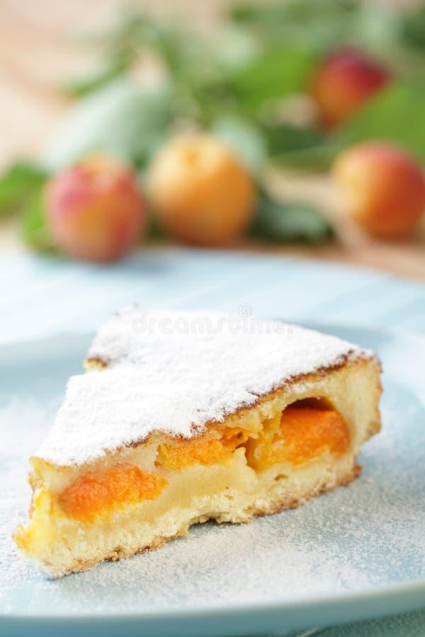Secteur d'abricot photographie stock