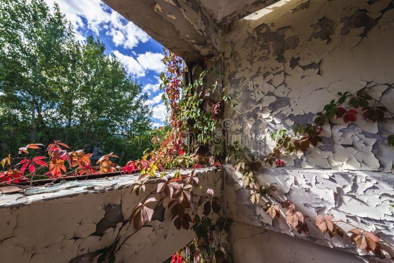 Secteur d'exclusion de Chernobyl photo stock