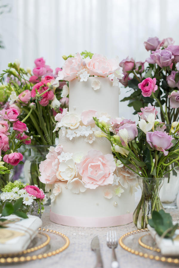 Secteur 8 de mariage image libre de droits