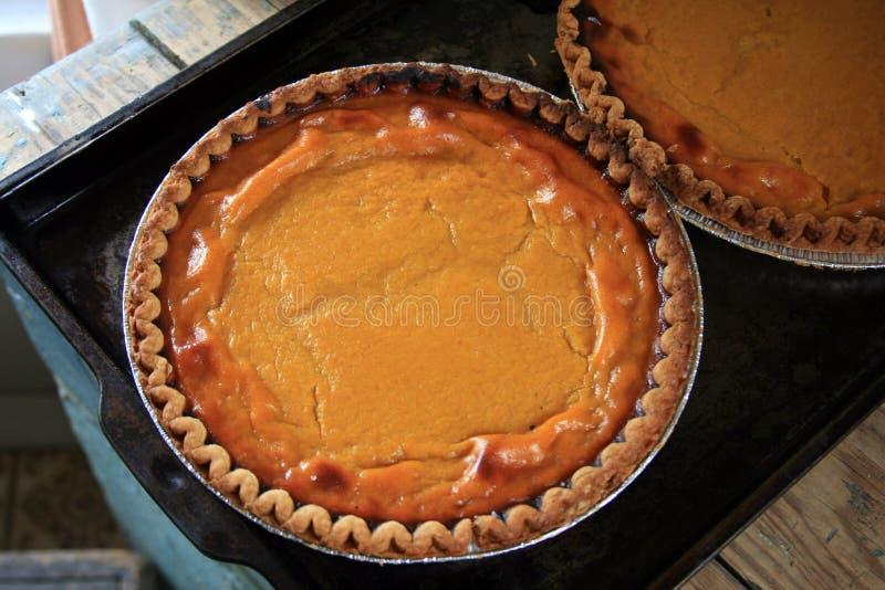 Download Secteur De Potiron De Pays? Image stock - Image du potiron, dessert: 3360157