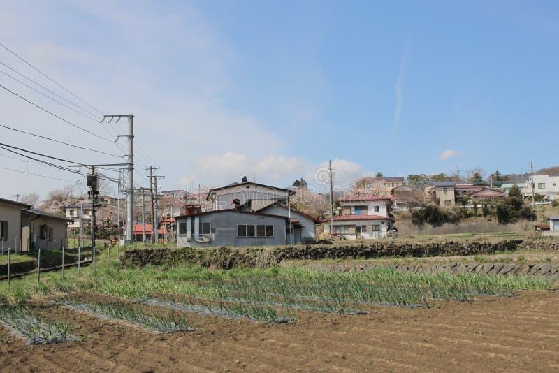 Secteurs de Shimo Yoshida chez YAMANASHI photos stock