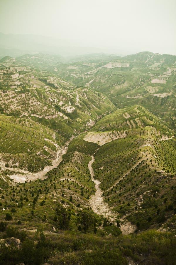 Secteurs reboisés dans les montagnes, province de Shanxi, Chine images stock