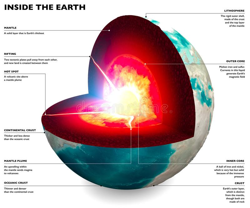 Section of the Earth, globe. Core and soil layers. Earth`s surface and ground section. 3d rendering. Earth on a white background vector illustration