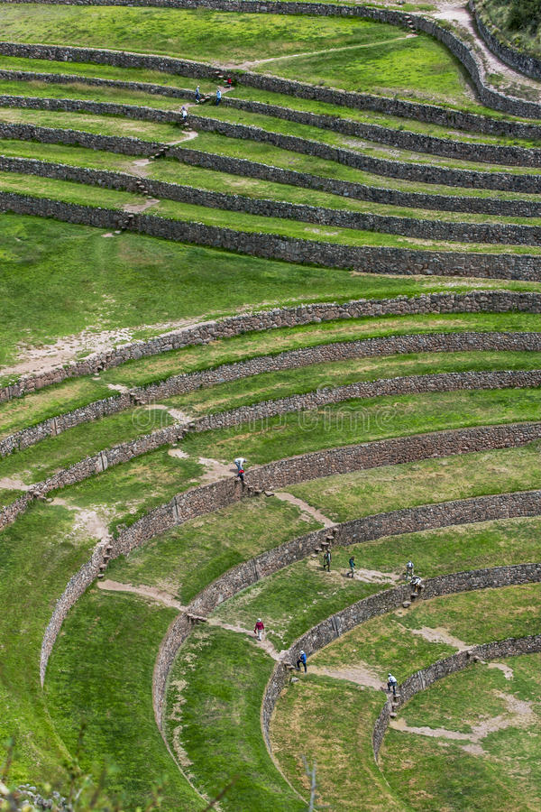 A section of the incredible ancient circles of Moray in Peru. Located 50 km northwest of Cuzco in the Sacred Valley of the Incas, it is believed that this was royalty free stock images