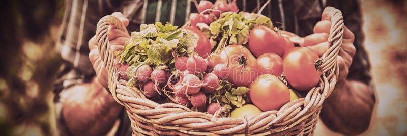 Section médiane du panier de participation d'agriculteur des légumes tout en se tenant image stock