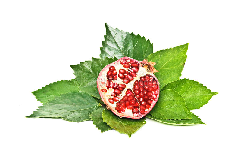 Section of ripe pomegranate stock photos