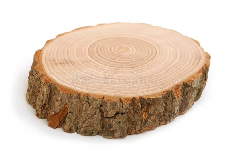 Section transversale de joncteur réseau d'arbre affichant des boucles d'accroissement photo libre de droits