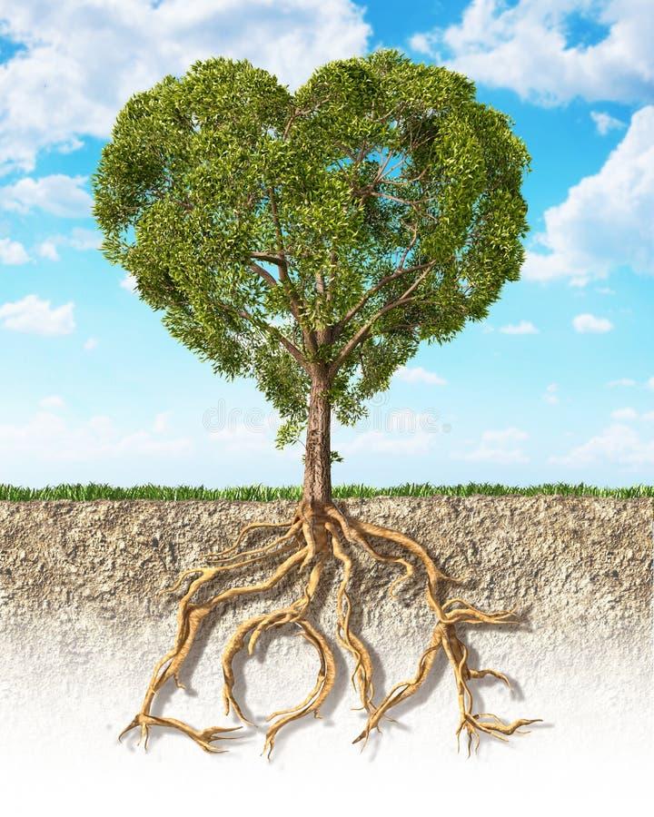 Section transversale de sol montrant un arbre en forme de coeur, avec sa racine image libre de droits