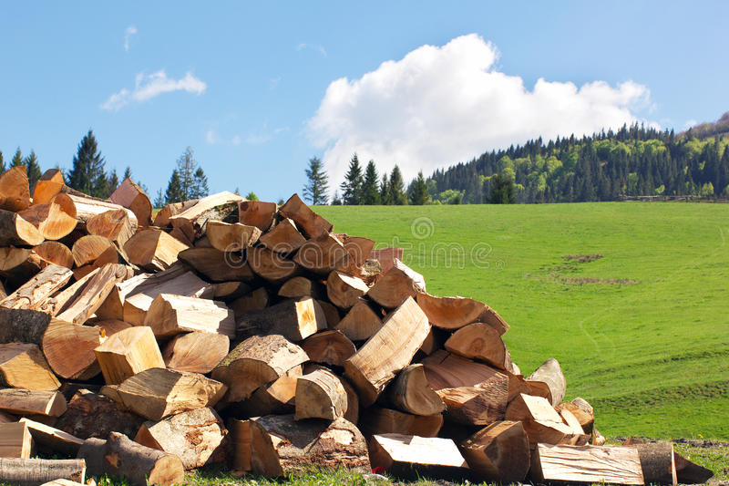 Sectional drawing stack of firewood on the green grass stock image