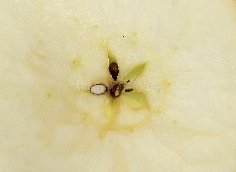 Vegetable background of ripe apple stock photography