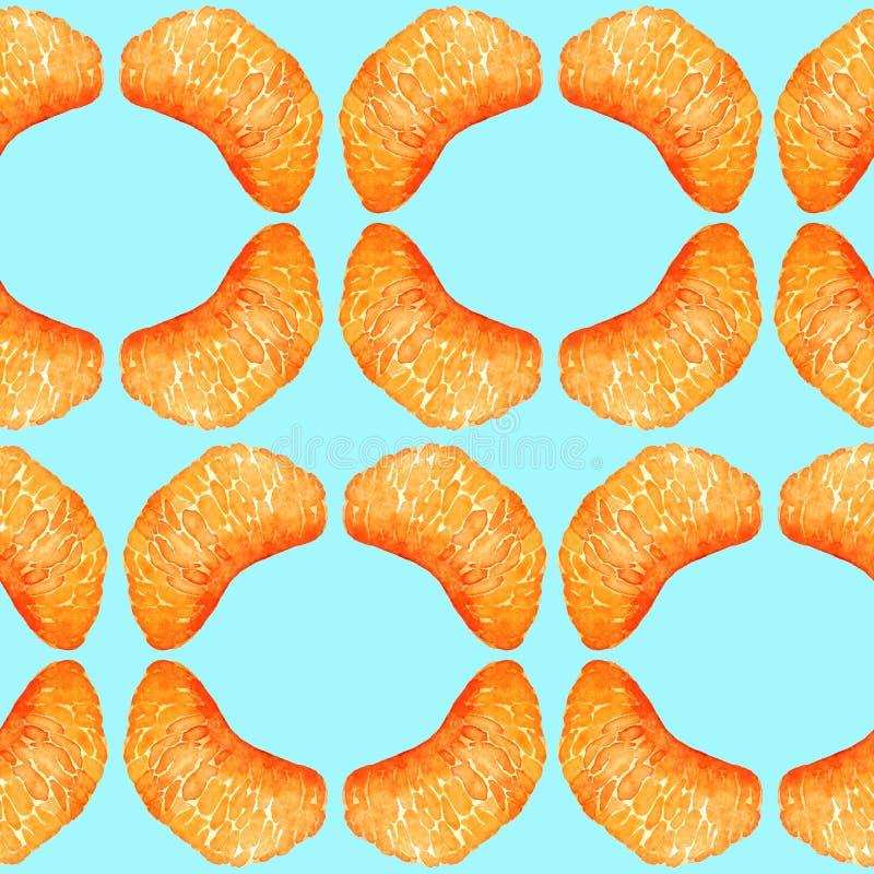 Sections de mandarine, tranches en forme géométrique sur le fond bleu mou illustration libre de droits
