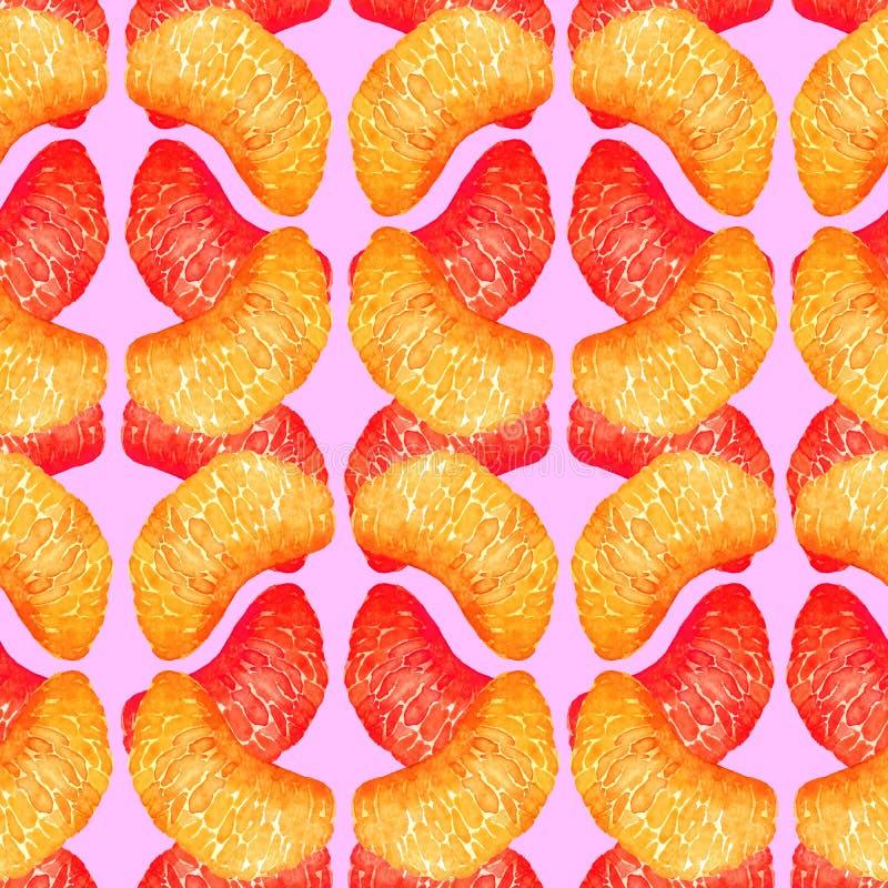 Sections de pamplemousse et d'orange ou de mandarine, tranches en forme géométrique, conception sans couture de modèle, illustra  illustration stock