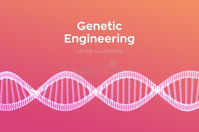 Secuencia de la DNA Malla de la estructura de las mol?culas de la DNA de Wireframe Plantilla editable del c?digo de la DNA Cienci libre illustration