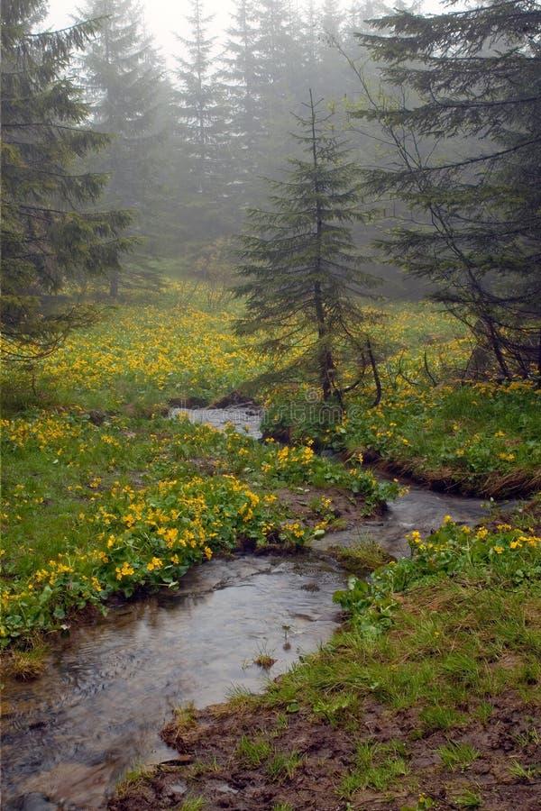 Download Secuencia De La Montaña Entre Imagen de archivo - Imagen de humedad, gris: 7284361
